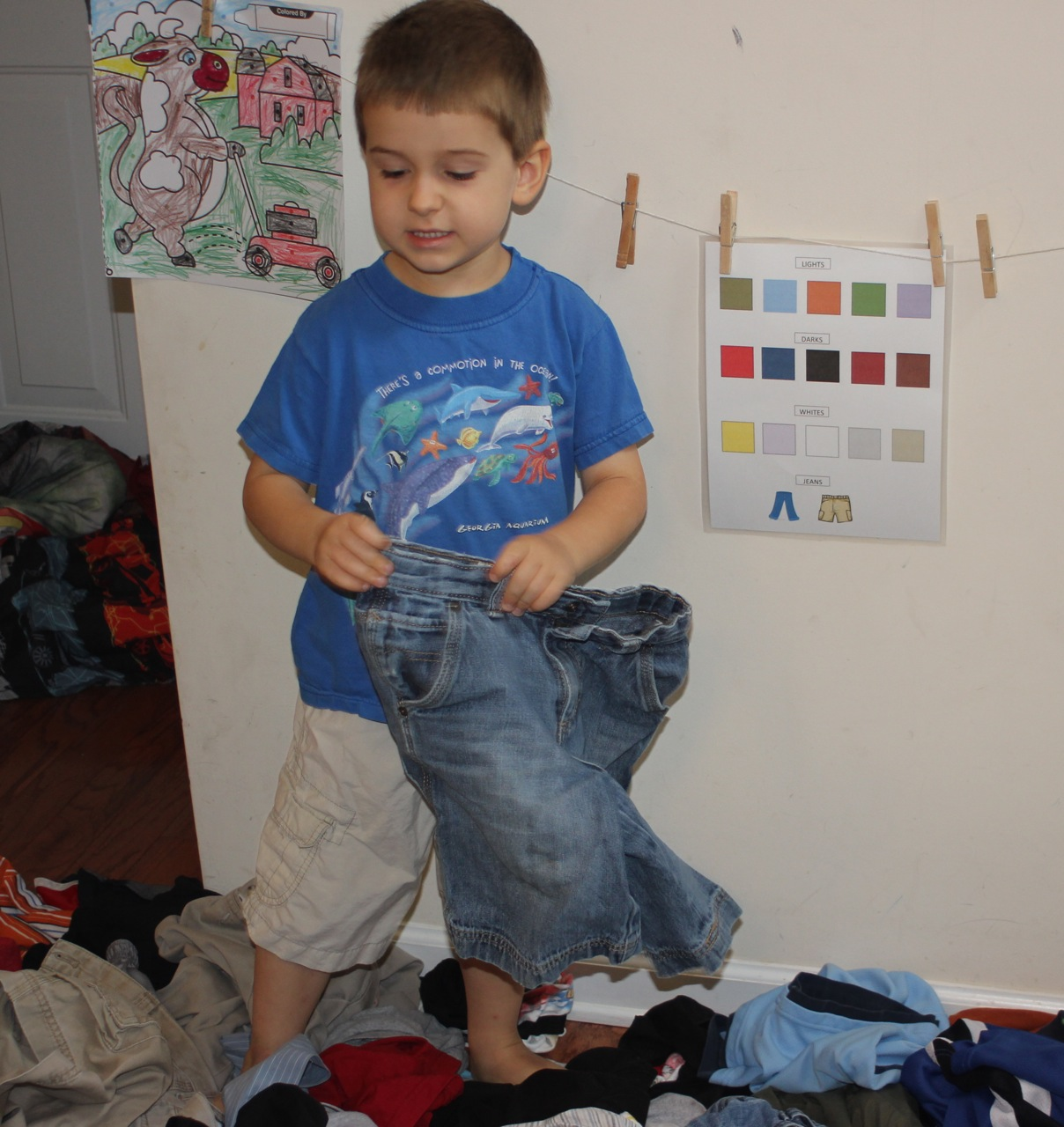 Laundry Sorting Chore — Home School Support Network