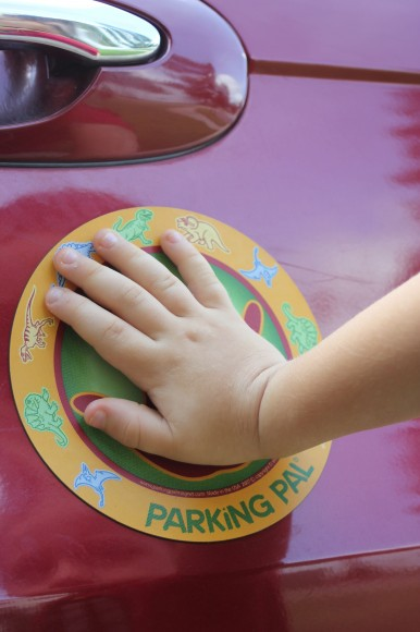 Parking Pal Hands on Car